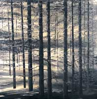 Dodds-Monochrome-Forest-Mixed-media-120-x120-cmW.jpg